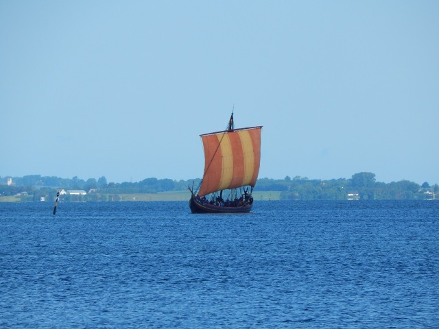 The Sea Stallion of Glendalough sailing in Roskilde Fjord.